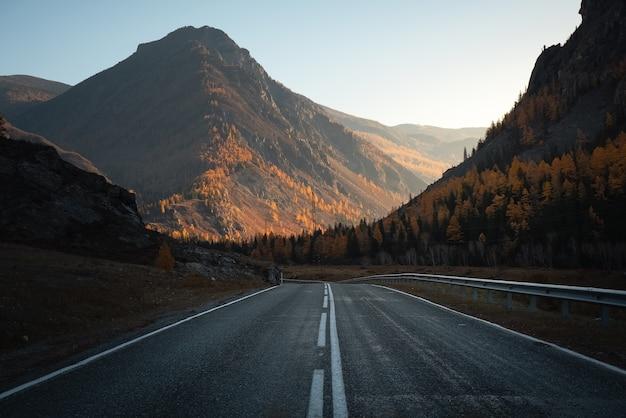 Пустая дорога через горный лес