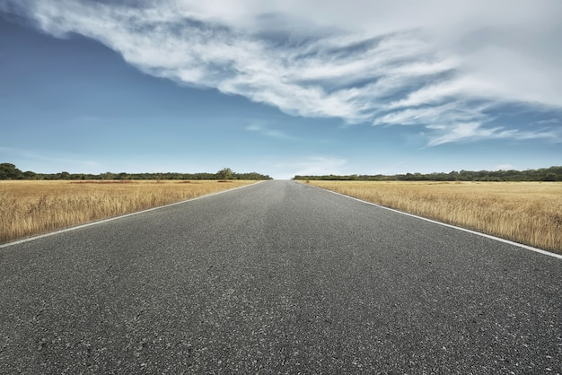 Empty road with savannah view