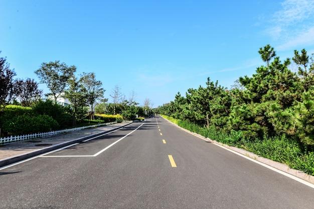 Strada vuota con vegetazione