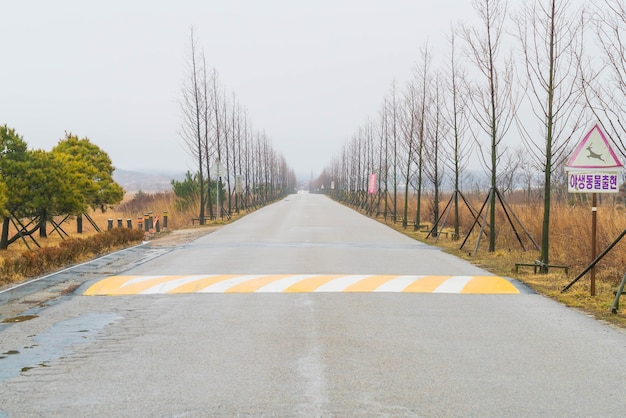 Strada vuota