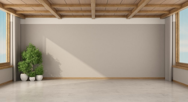 観葉植物と木製の天井のある空の部屋