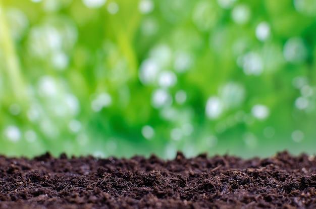 녹색 잎 배경에 식물을 위한 준비가 된 빈 토양.