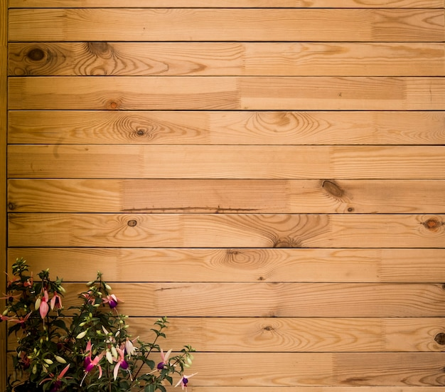 Empty space for advertising, wooden plank - recycled material - horizontal striped - old pattern background, flowering spring plant