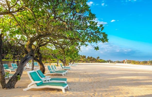 Empty sun loungers on white sandy beach on tropical coast on clear sunny day