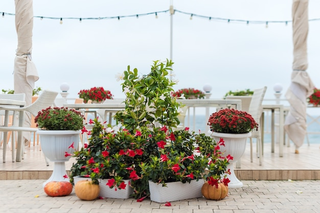 Empty tables and chairs and flower decorations of a restaurant on a terrace overlooking the sea, cafe with sea view.