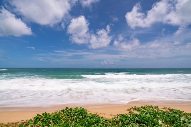 빈 열 대 여름 해변 배경 하늘과 하얀 모래 해변과 수평선 모래 해안에 부서 지는 파도.