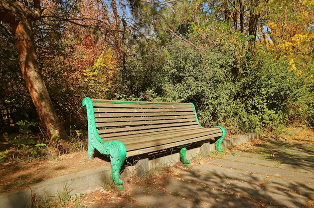 Empty vintage bench in an autumn park