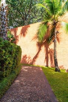 Empty walkway with tree and orange wall