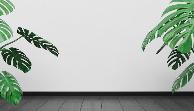 나무 바닥과 몬스 테라 식물 빈 벽 배경
