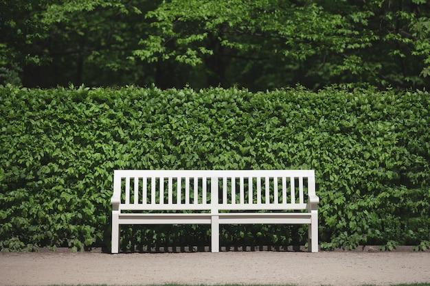 덤불 벽 근처 공원에 있는 빈 흰색 벤치