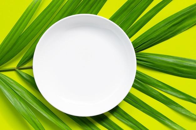 Опорожните белую керамическую плиту на тропической ладони выходит на зеленую предпосылку.