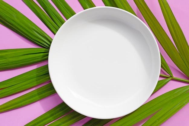 Опорожните белую керамическую плиту на тропической ладони выходит на розовую предпосылку.