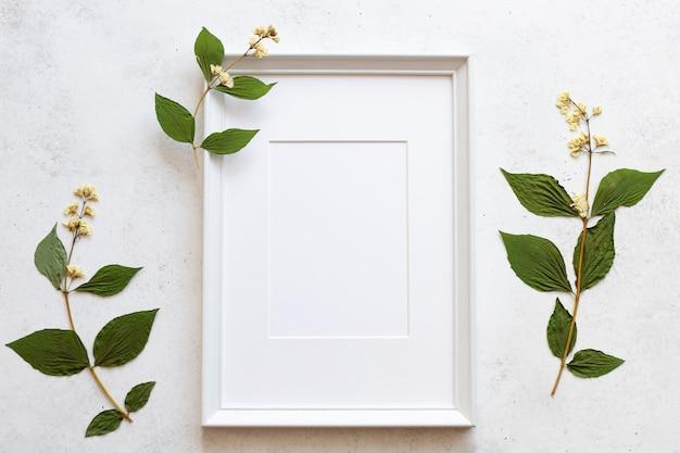 ドライフラワーの背景の空の白いフレーム。植物の背景。白いコンクリートの背景。