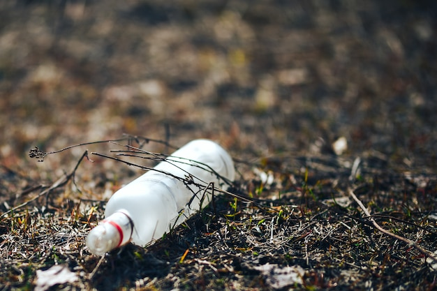 Empty white glass bottle lying on grass in early spring, polluted, conservancy.