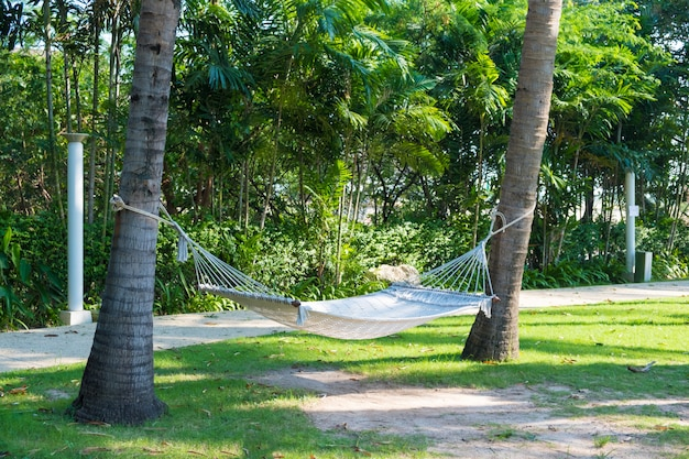 Empty white hammock hanging between two palm trees in garden with green field near the beach.