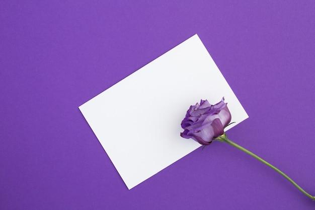 テキスト用の空の白い紙と紫色の表面に紫色の花