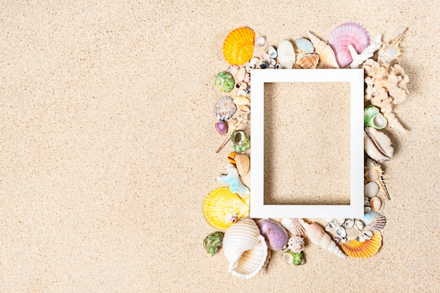 Empty white photo frame and mix sea shells and corals on clean white sand, top view, copy space