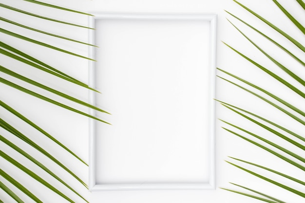 Empty white picture frame with palm leaves on plain surface