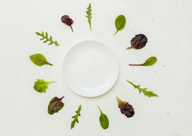 An empty white plate with green lettuce leaves around it
