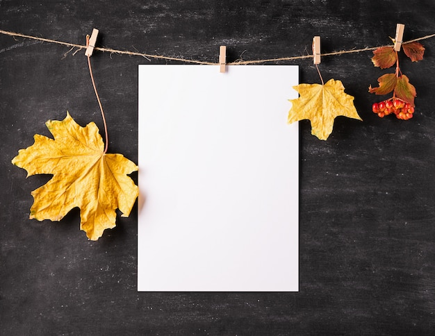 Empty white sheet of paper and dry leaves hang on clothespins on a black chalk board.