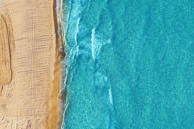 Empty wild beach with golden sand and blue water