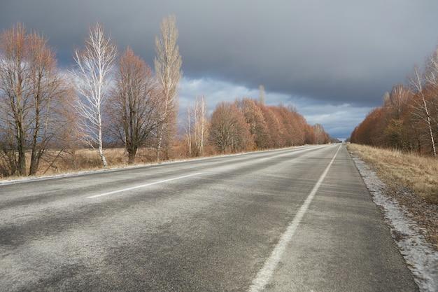 Пустая зимняя трасса без снега, с деревьями без листвы по бокам