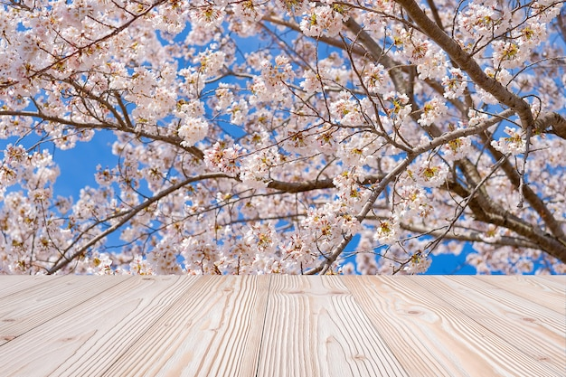 Empty wood table with beautiful pink cherry blossom flower background in spring season