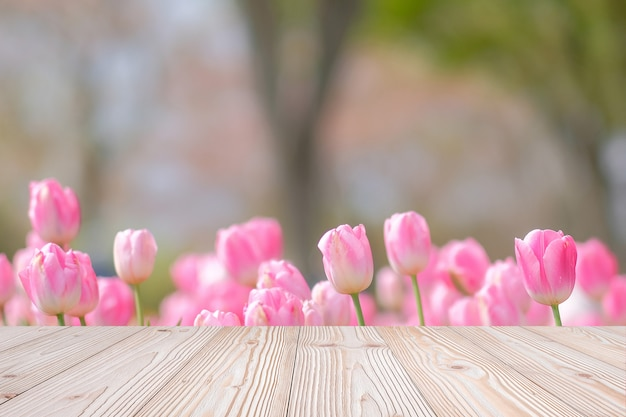 Empty wood table with pink tulip flower background in spring season
