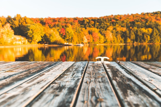 Empty wooden dock on the lake with trees