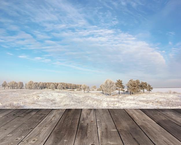 Empty wooden flooring against a winter landscape.