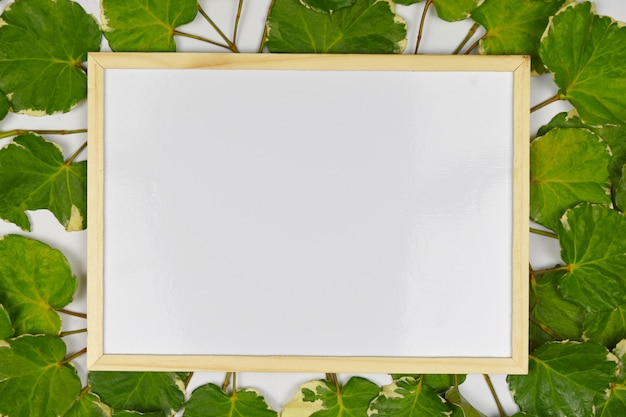 Empty wooden frame on green leaves