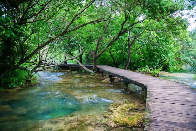 녹색 krka 국립 공원, 크로아티아에서 빈 나무 통로