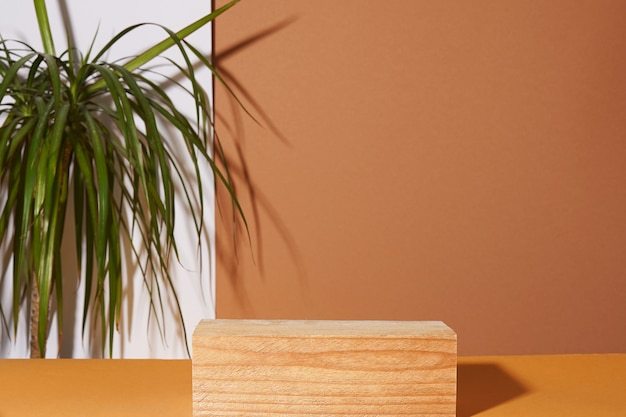 Empty wooden podium with green plant, natural color. concept mockup display.