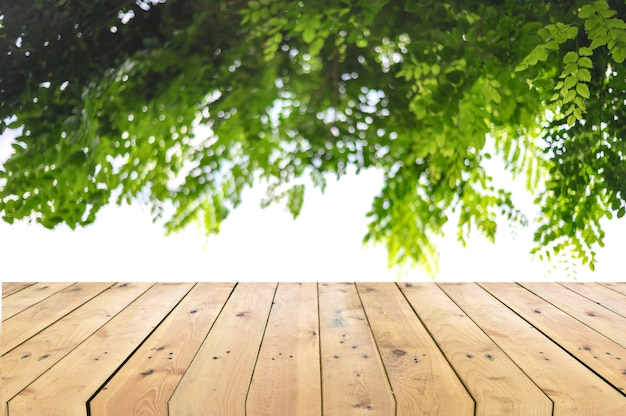 Empty wooden table top with tree branch background