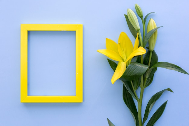 Empty yellow photo frame with lily flowers on blue surface
