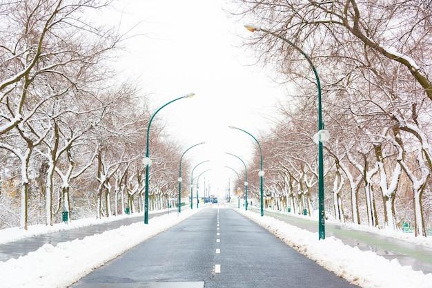 ブダペストマーガレット島のempy道路と雪