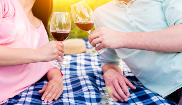 Enamored couple lying on blue checkered plaid and toasting wineglasses