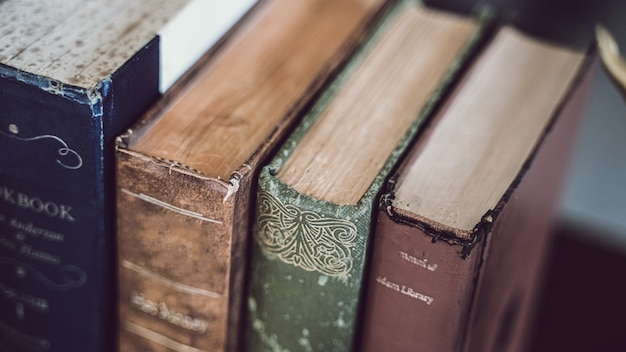 Encyclopedia on shelves