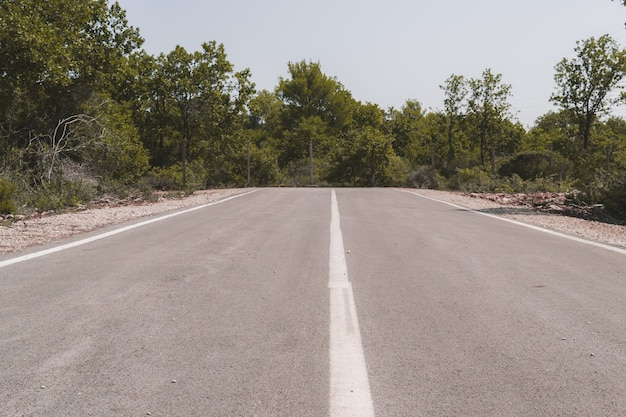 End of an asphalt road surrounded by greens and trees