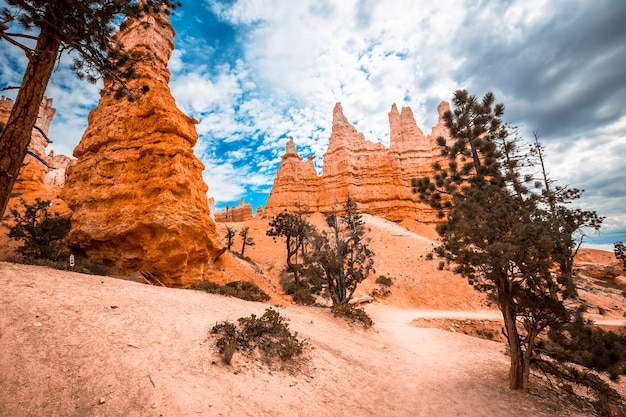 End of the queens garden trail in bryce national park, utah. united states