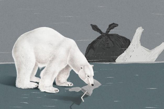 Endangered starving polar bear eating trash to survive in global warming