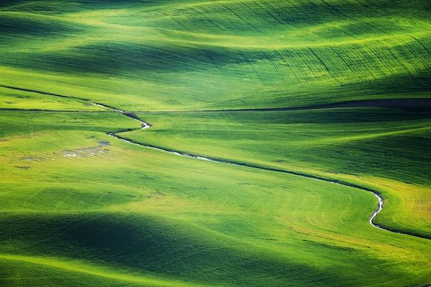 끝없는 잔디밭 풍경 초원 초원