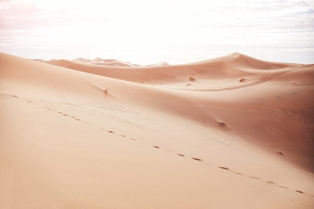 サハラ砂漠の果てしない砂浜、砂丘に灼熱の太陽が輝いています。モロッコメルズーガ