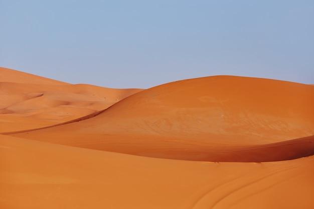 サハラ砂漠の果てしない砂浜、砂丘には灼熱の太陽が輝いています。モロッコメルズーガ