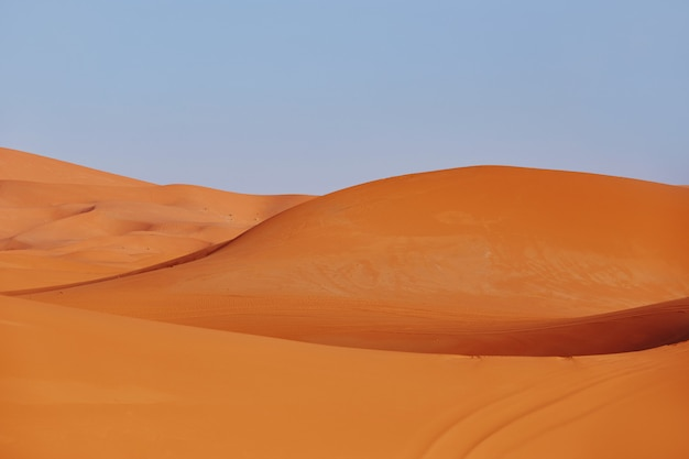 Endless sands of the sahara desert, the hot scorching sun shines on the sand dunes. morocco merzouga