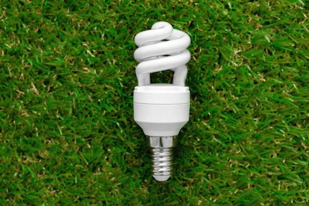 잔디에 누워 에너지 효율적인 전구