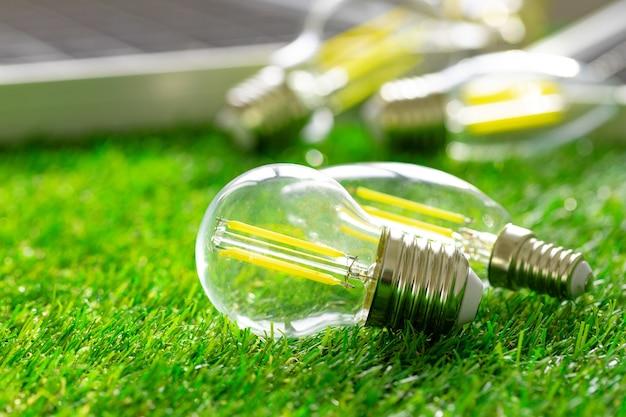草の上に横たわるエネルギー効率の高い電球