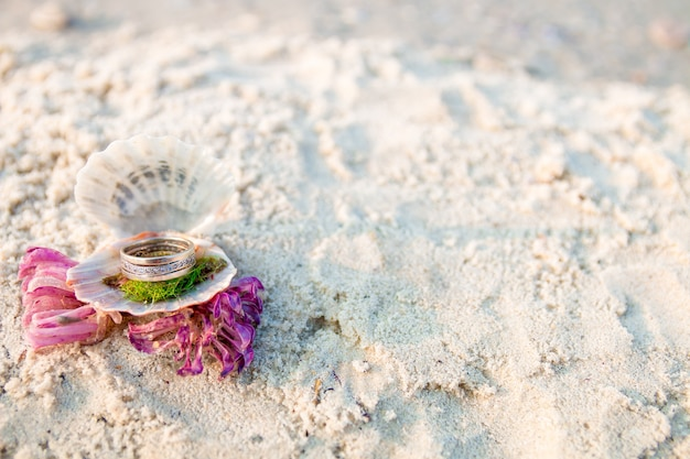 Engagement ring in open seashell on the ocean beach