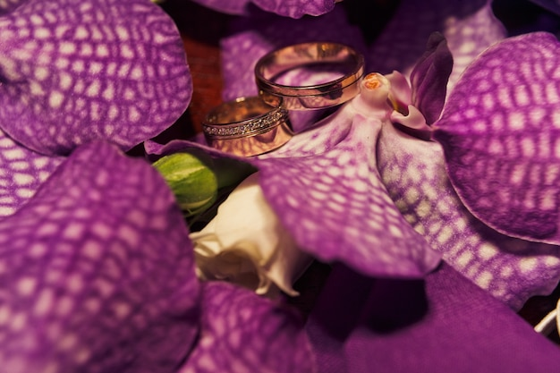 Engagement rings between flowers