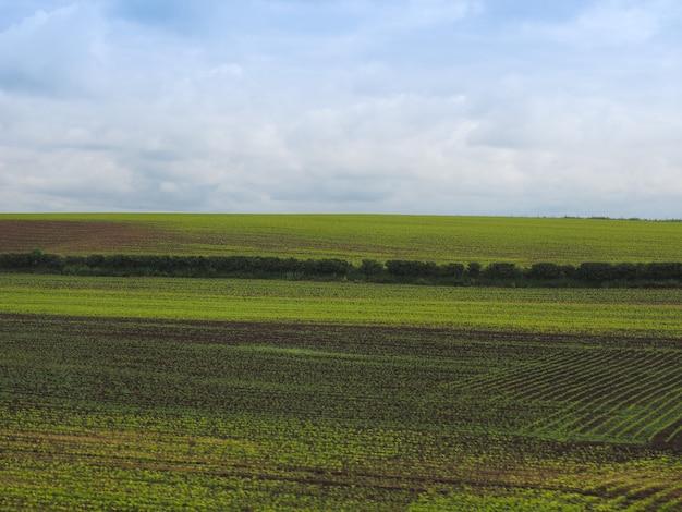 영어 국가 풍경